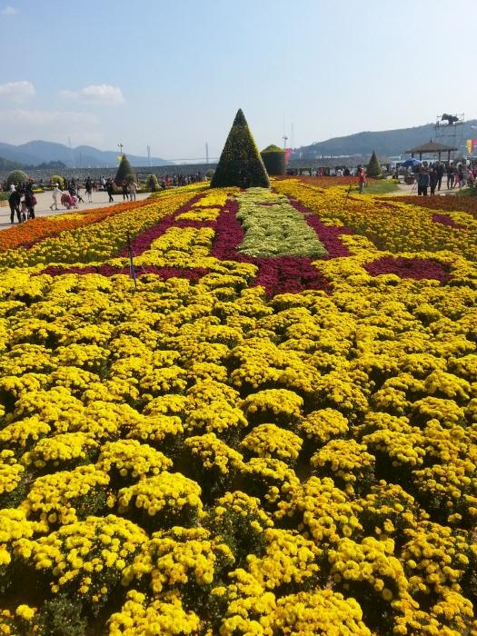 Gagopa-Chrysanthemenfestival Masan (마산가고파국화축제)