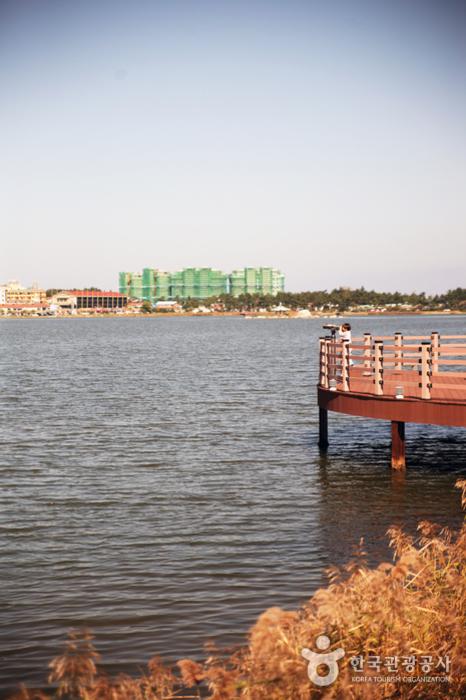 Озеро Кёнпхохо (경포호)8