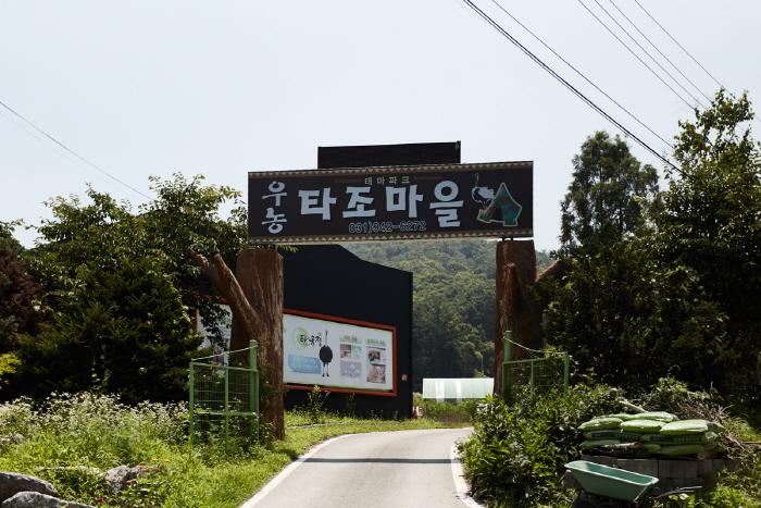 우농타조농장