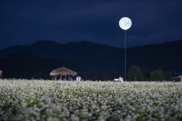 Культурный фестиваль имени писателя Ли Хё Сока в Пхёнчхане (평창효석문화제)26