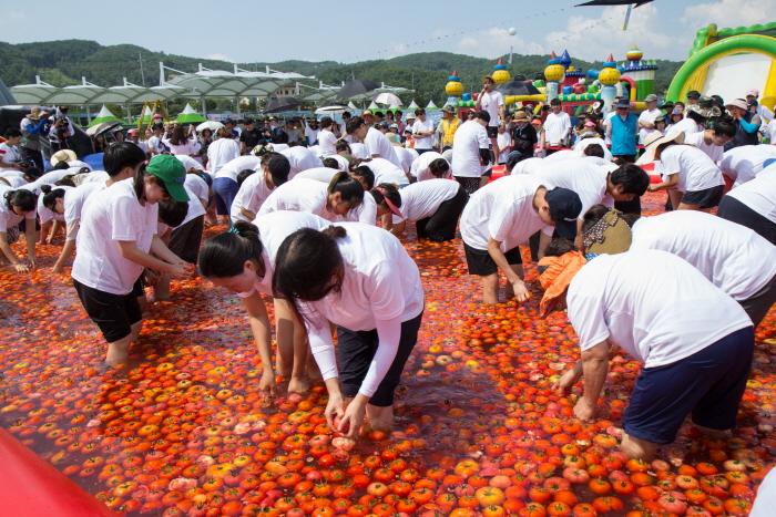 둔내고랭지토마토축제 2017  사진2