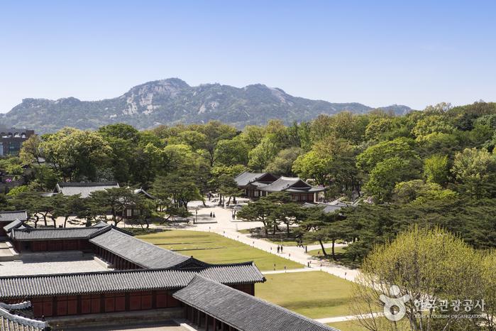 Дворец Чхангёнгун (창경궁)2