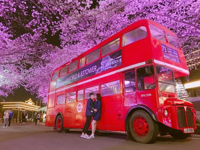 E-WORLDピョルピッ桜祭り(이월드 별빛벚꽃축제)