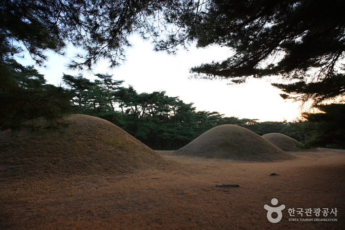 Gyeongju Bae-dong Samneung Royal Tombs (경주 배동 삼릉)