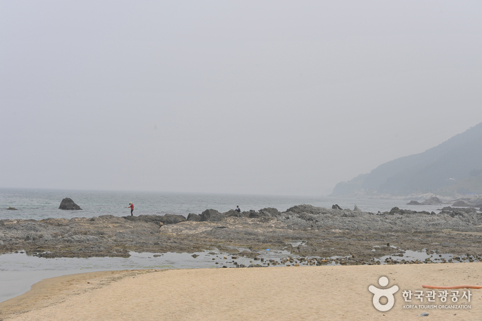 안인해변(안인해수욕장)