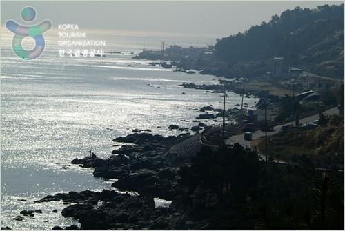 盈德郡竹蟹街(영덕대게로(강축도로))