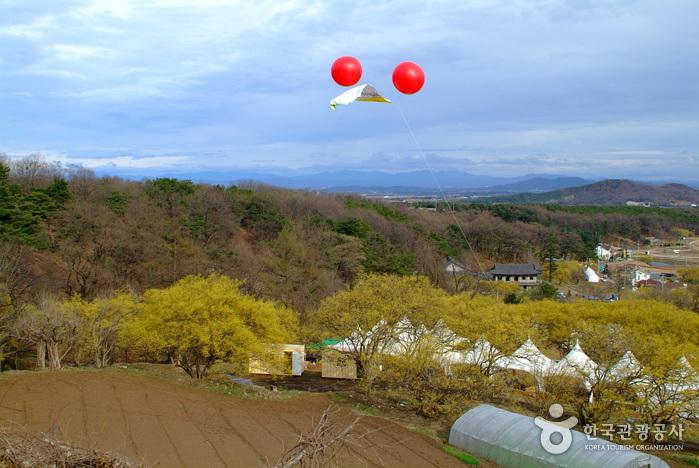 Icheon Sansuyu Villa...