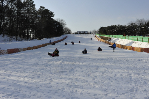 Korean Folk Village Sledding Hills (한국민속촌 눈썰매장)
