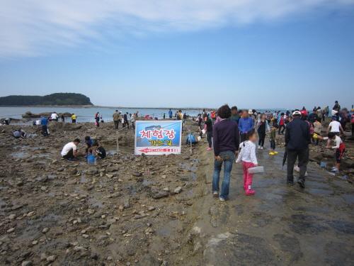 武昌浦神秘の海割れイイダコ・メイタガレイ祭り(무창포 신비의 바닷길 주꾸미·도다리 축제)