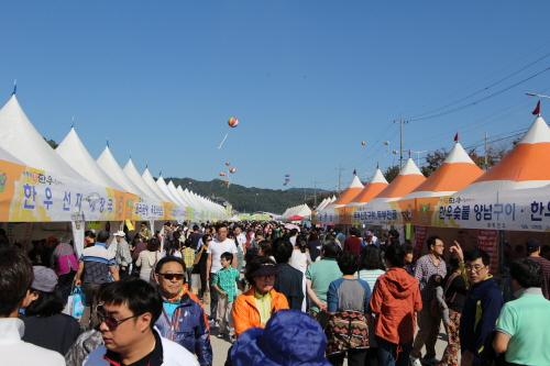 Hoengseong Hanu Festival (횡성한우축제)