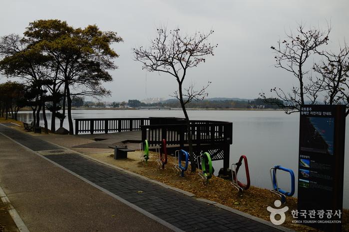 See Gyeongpoho (경포호)