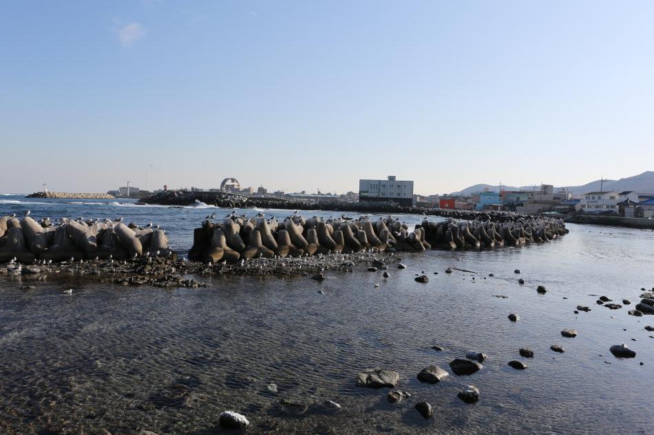 호미곶 바다 전경