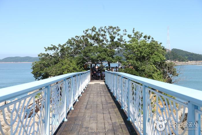 바위섬과 연결된 다리
