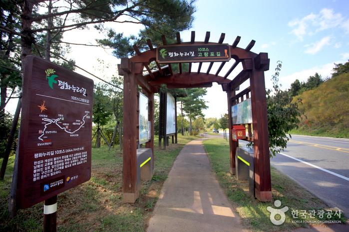 [평화누리길 10코스] 고랑포길