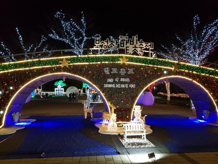 宝城茶畑光祭り(보성차밭빛축제)