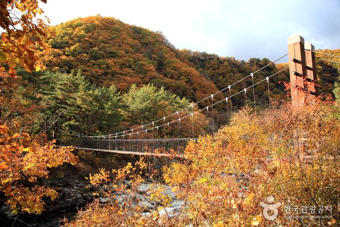 Wasserfall Dutayeon (두타연 (강원평화지역 국가지질공원))