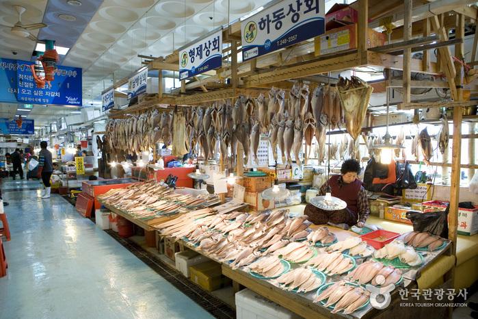 Sección de Peces Vivos del Mercado Jagalchi (부산 자갈치시장 활선어부)