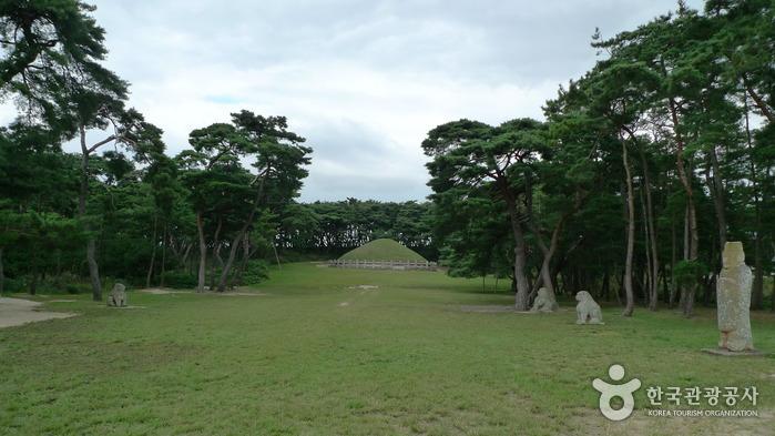 慶州 掛陵(경주 괘릉)