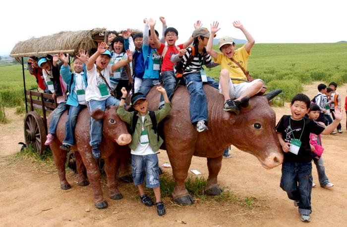 청보리밭축제