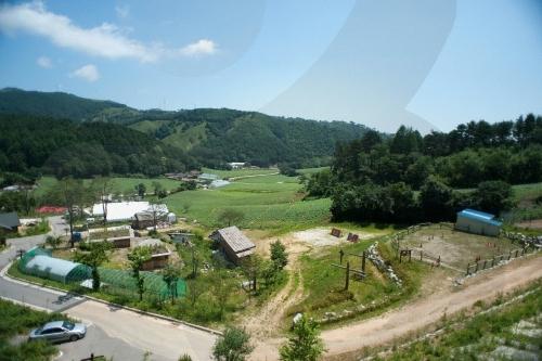 Daegwallyeong Snow Town (대관령 눈꽃마을)