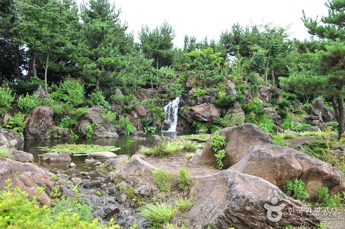 Hueree Natural Park (휴애리 자연생활공원)