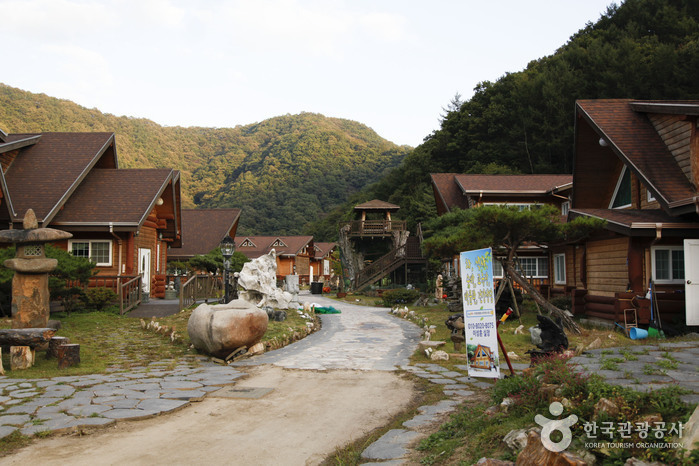 Indong Fossil Museum (인동화석박물관)