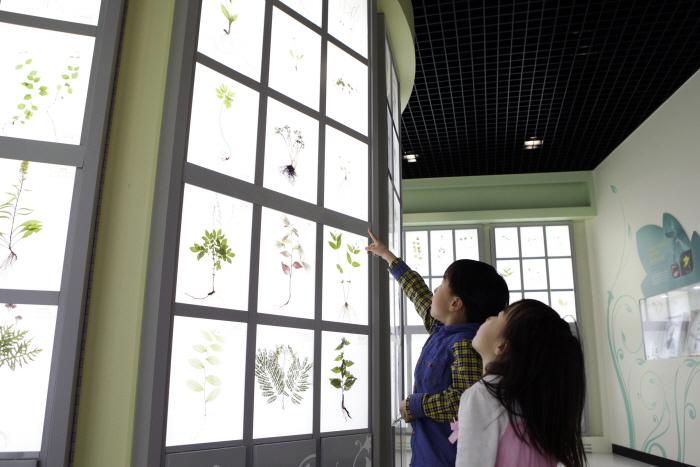 지리산허브밸리의 압화전시관은 최고의 식물도감이다