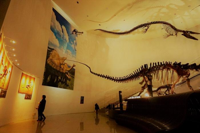 목포자연사박물관 중앙홀에서 거대한 공룡 화석이 방문객을 맞이한다.