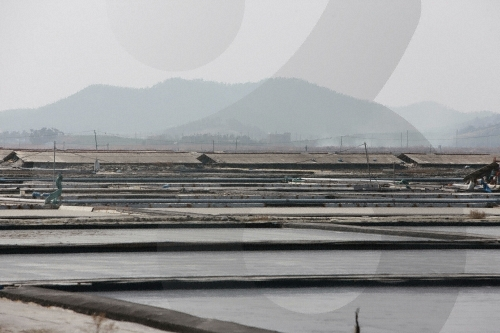 Taepyeong Salt Farm (태평염전)