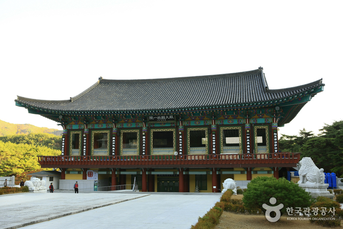Donghwasa Temple Stay (동화사 산사체험)
