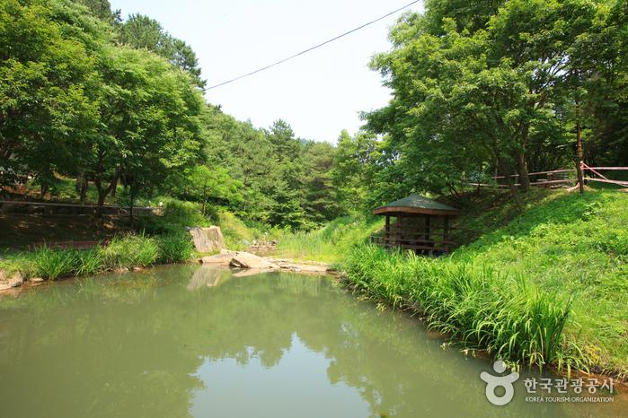 장동산림욕장