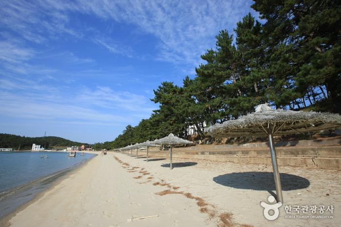 Ttangkkeut Songho Beach (땅끝송호해변)