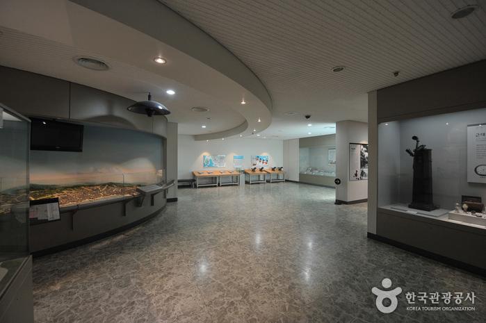 Городской музей Инчхона (인천광역시립박물관)7