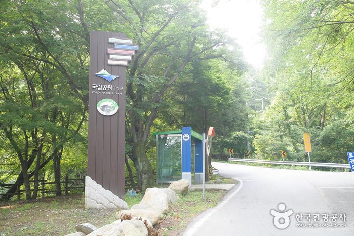 Gayasan National Park (Hongnyudong, Cheongnyangdong Area) (가야산국립공원-홍류동,청량동지구)