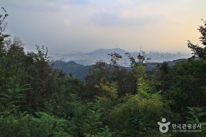 [북악하늘길 1산책로] 북악팔각정~말바위쉼터