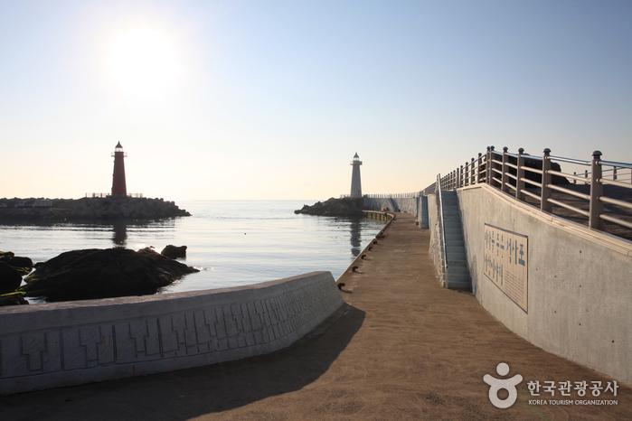Cheongsapo Port (청사포)