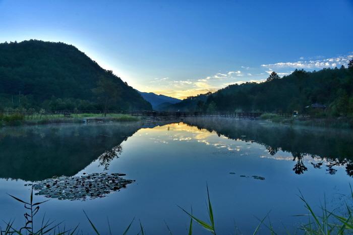 국립백두대간수목원  사진11