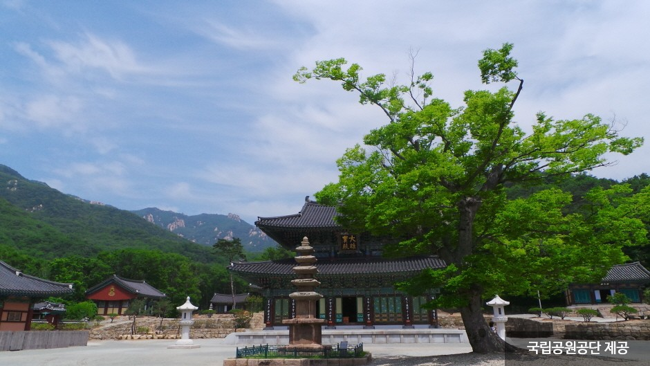 道岬寺(도갑사)