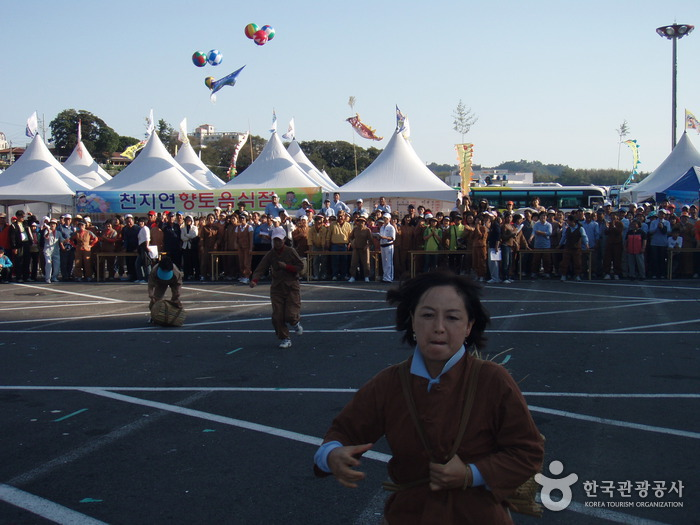 Seogwipo Chilsimni Festival (서귀포 칠십리축제)