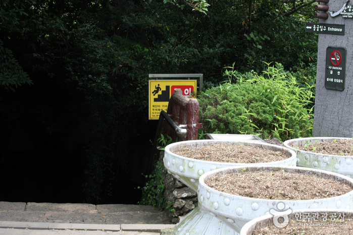 萬丈窟[UNESCO世界自然遺產](만장굴[유네스코 세계자연유산])