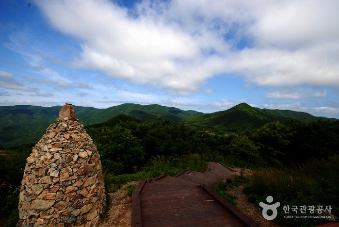 Gyeongsangbuk-do Arboretum (경상북도수목원)
