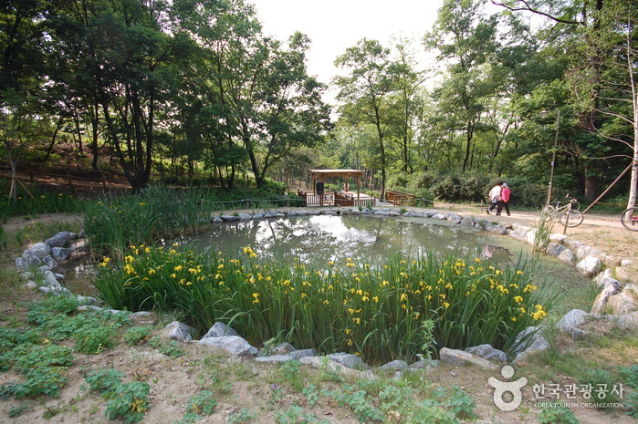 Gwanaksan Mountain Ecological Park (관악산 생태공원)