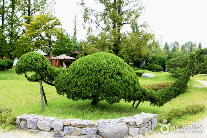 Mulhyanggi Arboretum (물향기수목원)