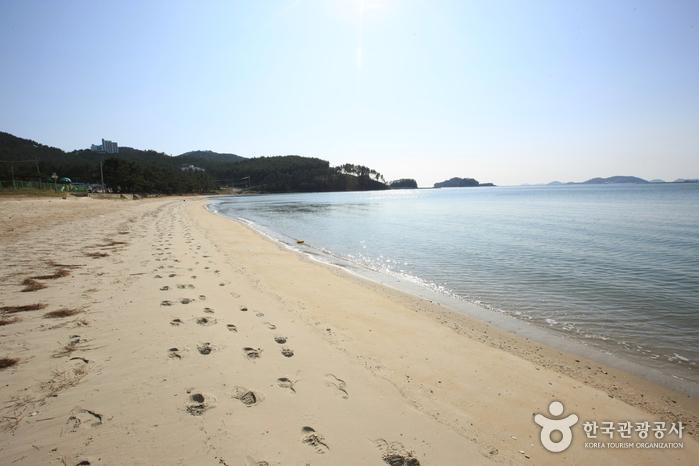Пляж Сонхо (송호해수욕장)9