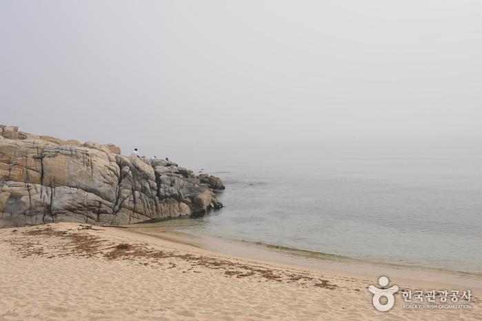 사근진해변(사근진해수욕장)