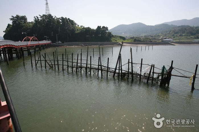 Trampa tradicional de pesca jukbangnyeom (원시어업죽방렴)