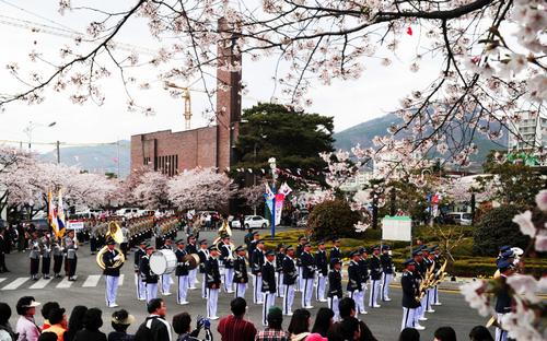 Jinhae Gunhangje Festival (진해군항제)