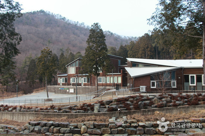 Namhae Pyeonbaek Recreational Forest (국립 남해편백자연휴양림)