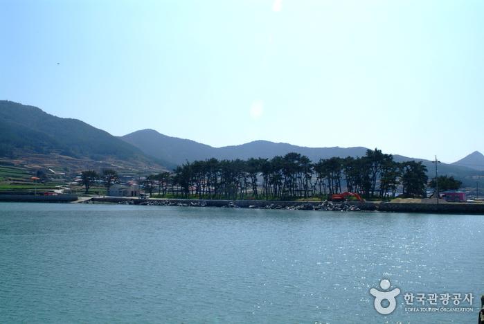 Sinheung Beach (신흥해수욕장)