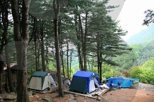 祝靈山自然休養林(축령산자연휴양림)12